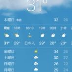 いつ涼しくなるの?