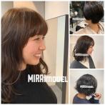 MIRAI model